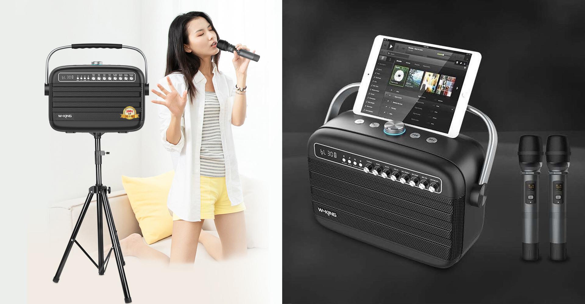 W-King K9 – Loa Karaoke Xách Tay Công Suất Lớn, Hát Cực Hay