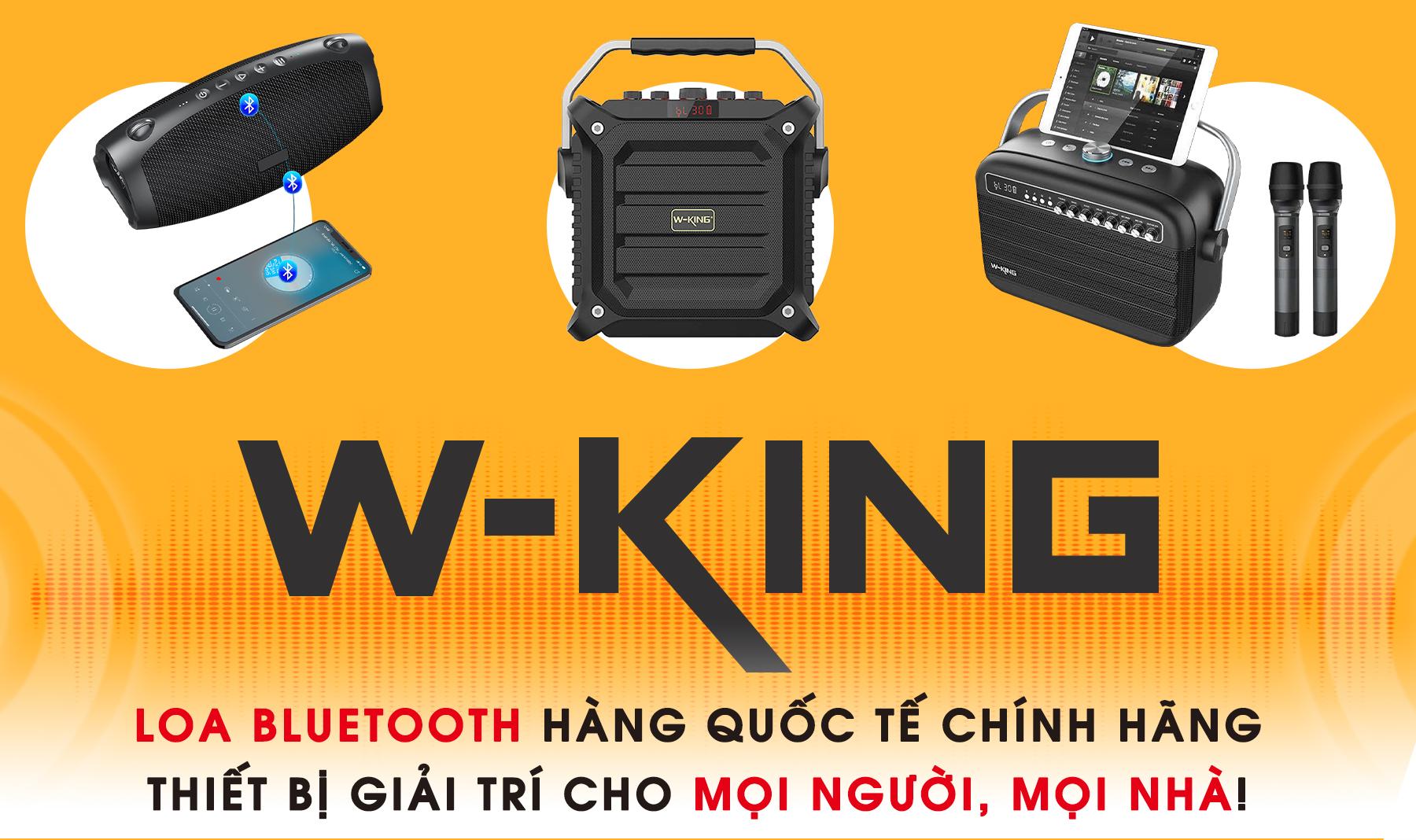 Điện tử Đức Hiếu NPP thương hiệu W-King